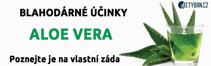 Blahodárné účinky Aloe Vera